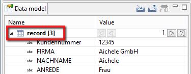 Screenshot data model pane